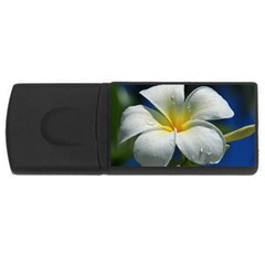 Frangipani tropical flower 2Gb USB Flash Drive (Rectangle)