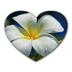 Frangipani tropical flower Mouse Pad (Heart)
