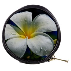 Frangipani Tropical Flower Mini Makeup Case