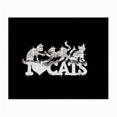 Catz Glasses Cleaning Cloth
