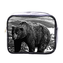 Vintage Usa Alaska Brown Bear 1970 Single Sided Cosmetic Case
