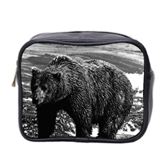 Vintage USA Alaska brown bear 1970 Twin-sided Cosmetic Case