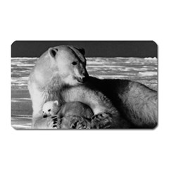 Vintage Usa Alaska Mother Polar Bear 1970 Large Sticker Magnet (rectangle)