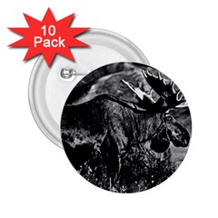 Vintage USA Alaska bull moose 1970 10 Pack Regular Button (Round)