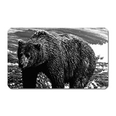 Vintage Usa Alaska Brown Bear 1970 Large Sticker Magnet (rectangle)