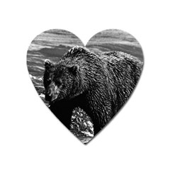 Vintage USA Alaska brown bear 1970 Large Sticker Magnet (Heart)