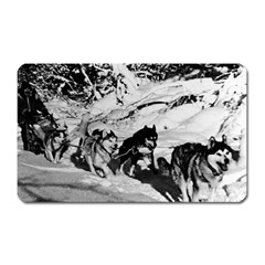 Vintage USA Alaska dog sled racing 1970 Large Sticker Magnet (Rectangle)