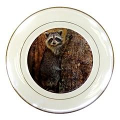 Raccoon Porcelain Display Plate