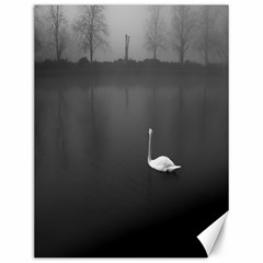 swan 12  x 16  Unframed Canvas Print