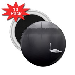 swan 10 Pack Regular Magnet (Round)