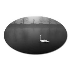 swan Large Sticker Magnet (Oval)