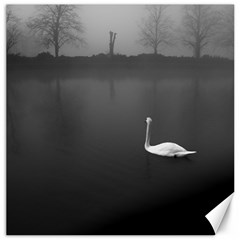 swan 16  x 16  Unframed Canvas Print