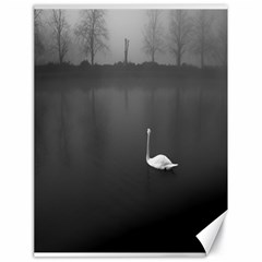 swan 18  x 24  Unframed Canvas Print