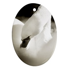 swan Ceramic Ornament (Oval)