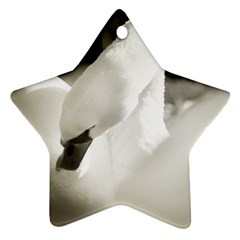 swan Ceramic Ornament (Star)