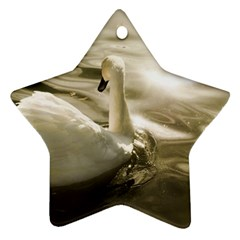 Swan Twin Sided Ceramic Ornament (star)