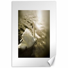 Swan 24  X 36  Unframed Canvas Print
