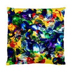 Colors Single-sided Cushion Case
