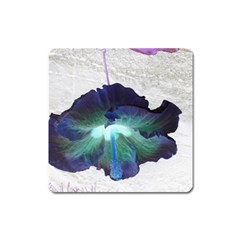 Exotic Hybiscus   Large Sticker Magnet (Square)