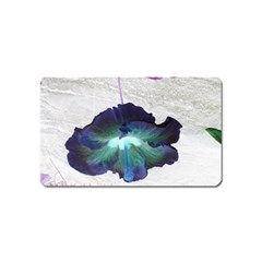 Exotic Hybiscus   Name Card Sticker Magnet