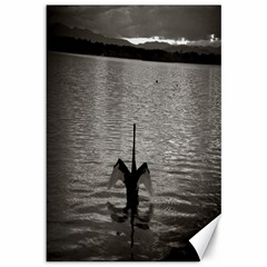 swan, Canberra 12  x 18  Unframed Canvas Print