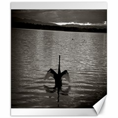 Swan, Canberra 20  X 24  Unframed Canvas Print