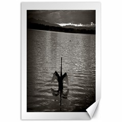 swan, Canberra 20  x 30  Unframed Canvas Print