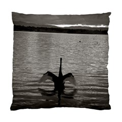 Swan, Canberra Single Sided Cushion Case