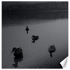 ducks 16  x 16  Unframed Canvas Print