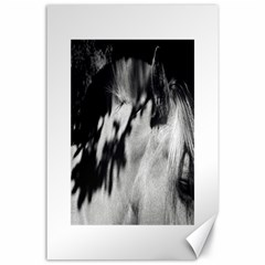 horse 24  x 36  Unframed Canvas Print