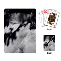 Horse Standard Playing Cards