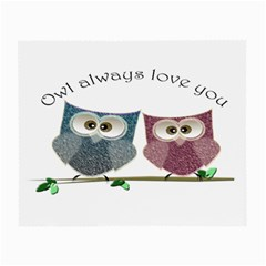 Owl Always Love You, Cute Owls Glasses Cleaning Cloth