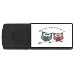 Owl always love you, cute Owls 2Gb USB Flash Drive (Rectangle)