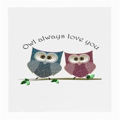 Owl Always Love You, Cute Owls Twin Sided Large Glasses Cleaning Cloth