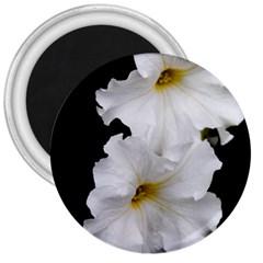 White Peonies   Large Magnet (Round)