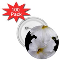 White Peonies   100 Pack Small Button (round)