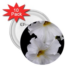 White Peonies   10 Pack Regular Button (round)