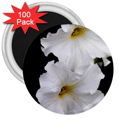 White Peonies   100 Pack Large Magnet (Round)