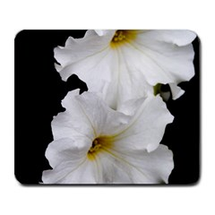 White Peonies   Large Mouse Pad (Rectangle)