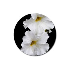 White Peonies   Large Sticker Magnet (Round)