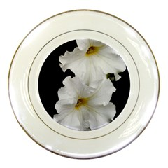 White Peonies   Porcelain Display Plate
