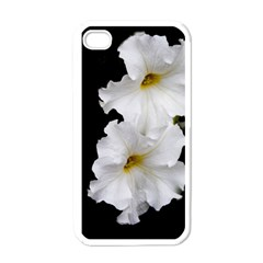 White Peonies   White Apple Iphone 4 Case