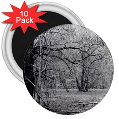 Black and White Forest 10 Pack Large Magnet (Round)