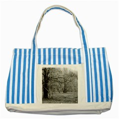 Black And White Forest Blue Striped Tote Bag