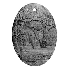 Black and White Forest Oval Ornament (Two Sides)