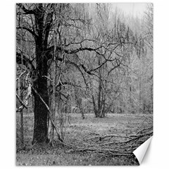 Black and White Forest 8  x 10  Unframed Canvas Print