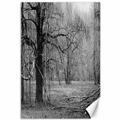 Black And White Forest 12  X 18  Unframed Canvas Print