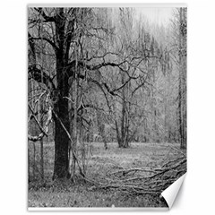 Black And White Forest 18  X 24  Unframed Canvas Print