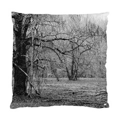 Black And White Forest Single Sided Cushion Case