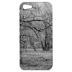 Black And White Forest Apple Iphone 5 Hardshell Case
